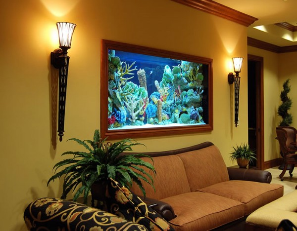 house mounted aquarium india