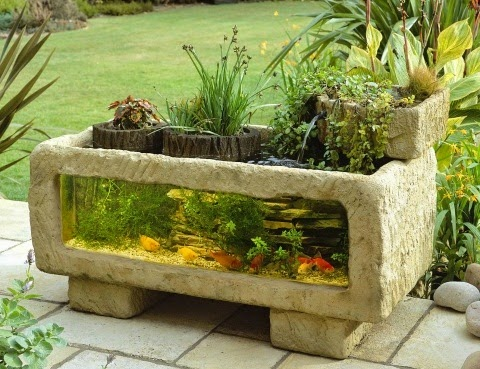 house outdoor aquarium india