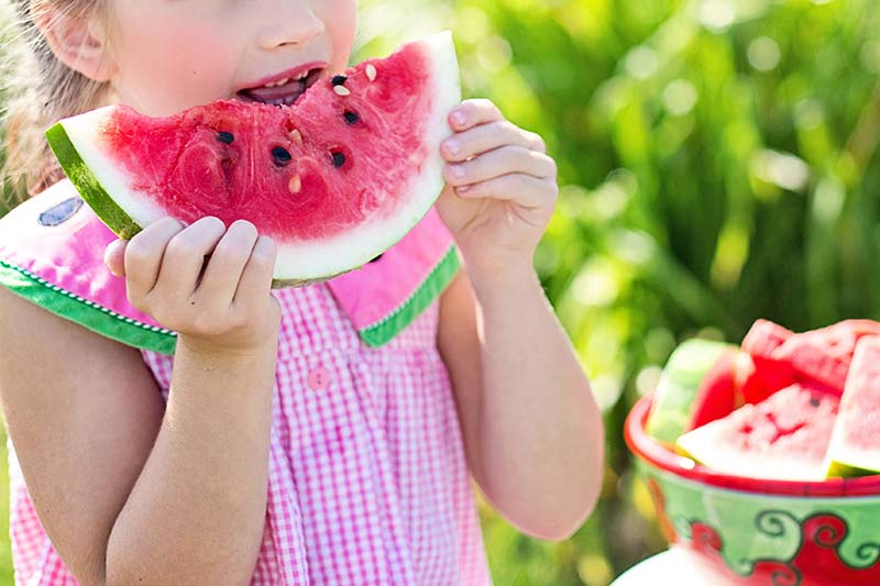 How To Stay Cool In Summer watermelon