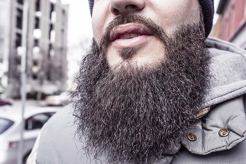 men's beards have more germs than dog fur