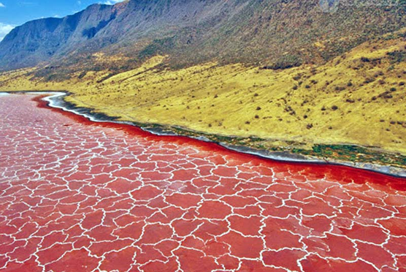 worlds-most-mysterious-lake-natron